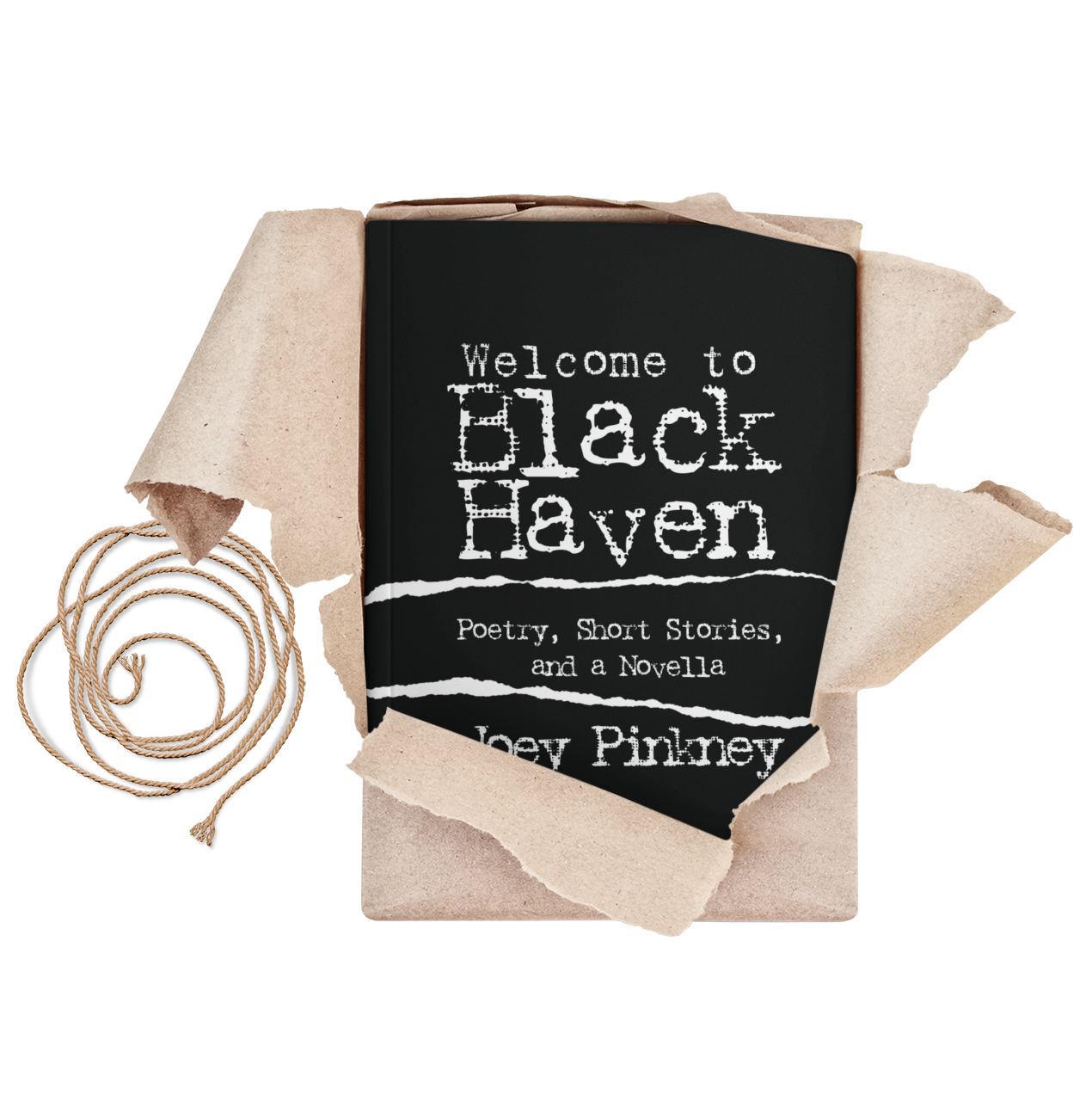Welcome to Black Haven: Poetry, Short Stories, and a Novella Joey Pinkney